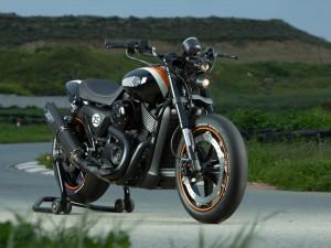 Custom Harley-Davidson Street 750 Revolution X