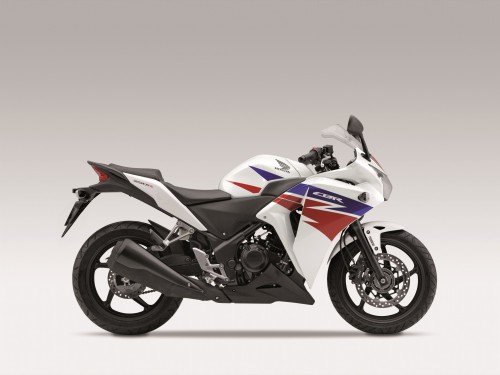 The CBR250R looks like the large Fireblade